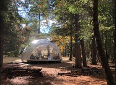 Oregon Camping, Oregon Travel, Oregon Forest, Rogue River, Forest Bathing, Forest View, The Perfect Getaway, Forest Service, Closer To Nature
