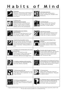 Habits_of_Mind_Summary_Outline.jpeg