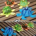 Laboratori per  bambini : tartarughe