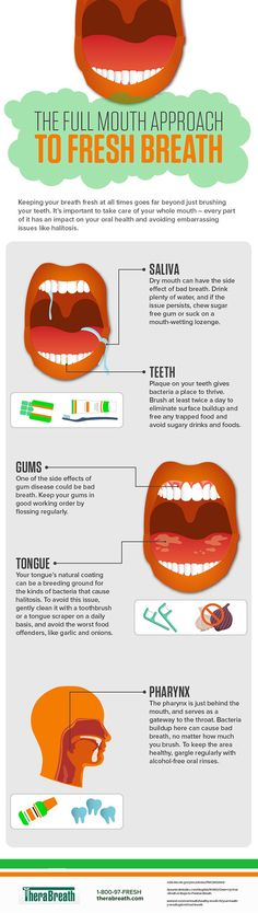The Full Mouth Approach To Fresh Breath #Infographic #DentalHealth