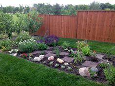 2nd year of checkerboard flower garden.