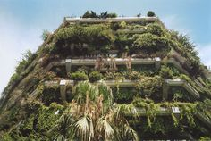 """Emmett Zeifman is the photographer behind this stunning photograph of Barcelona's overgrown architecture, which appeared in our debut issue. He's also an architect and one of the editors of Project Journal: """"Project argues for the potential of critical and sustained ideas in architecture, investigating the possibilities that exist for architects to develop and articulate a project."""""""