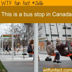 Bus Stop In Canada - WTF fun facts thank you Mathew