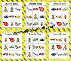Free printable Insects Bingo game for kids ages 2 to Helps kids learn to identify 10 different insects. Fun Classroom Games, Bingo Games For Kids, Bee Games, Preschool Math Games, Carnival Games For Kids, Outdoor Games For Kids, Activities For Teens, Board Games For Kids, Free Preschool