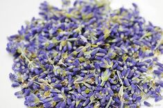CLEARANCE SALE Lavender Buds Organic Culinary by Herbs4Health