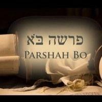 Torah portion Bo 5778 - Shabbat Service in Italian and English di BeitShalomMessianicHouseofPrayerPozzuoliItaly su SoundCloud