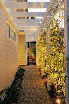 gartendesign ideen Narrow Fence Pathway - Bamboo clivia etc Garden Yard Ideas, Backyard Garden Design, Backyard Patio, Fence Garden, Garden Paths, Seiten Yards, Side Yard Landscaping, Landscaping Ideas, New Home Builders