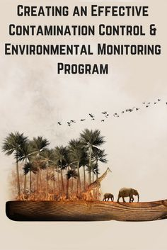 Learn in detail about various environmental problems and the different aspects of contamination control. Health And Safety, Biology, Environment, Detail, Green, Ap Biology