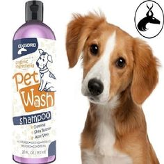 Dog-Wash-Shampoo-Conditioner-100-Organic-for-clean-shinny-look-FREE-SHIPPING