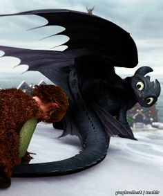 --Dragons- Gift of the Night Fury ... hiccup and toothless
