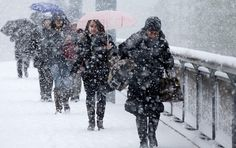 Ninge ca-n povesti peste Timisoara! Romania, Places To Visit, Snow, Seasons, Explore, Halloween, Cats, Outdoor, Martie