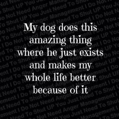 Love my dog! <3 my other dog has the same effect on my life, SHE makes everything amazing.