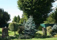 Galéria | Záhradníctvo Garden Team Gardening, Plants, Lawn And Garden, Plant, Planting, Planets, Urban Homesteading, Horticulture