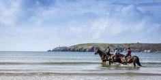 Stunning Coastal Location, Wild Atlantic Way, Freshest Local Food Best Beaches In Ireland, Ireland Beach, West Cork, Sandy Beaches, Outdoor Activities, Kayaking, Countryside, Wealth, The Good Place