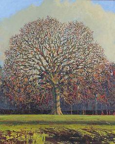 """""""Oak Tree in Winter"""" - Francis Hamel"""