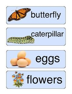 Spring Word Wall Here is a nice alphabetizing activity for your literacy centers or groups.