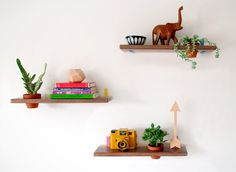 DIY wall-mounted succulent shelves.