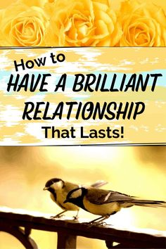 Make your relationship flourish using research-based ideas for long lasting healthy happy brilliant relationships from friends and family to lovers, based on the reigning King of relationships Professor John Gottman. He did the research, got the data and wrote the book and knows what produces lasting brilliant relationships and what dooms them. Relationship Challenge, Strong Relationship, John Gottman, Secrets Of The Universe, Finding Happiness, Faith Hope Love, Happy Relationships, Mental Health Awareness, Self Development