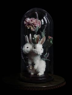 """The prettiest flowers will grow when your body rots to the earth, 2013, I / III, 43 x 20 x 20 cm, taxidermy rabbit, artificial flowers, wire, glue, glass dome."""