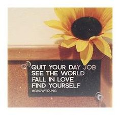 quit your day job see the world fall in love find yourself