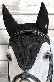Résultats de recherche d'images pour « bonnet de cheval »