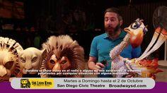 Segmento Entravisión para Disney's The Lion King San Diego, Lion, Musical, Challenges, Disney, October 2, Leo, Lions, Disney Art