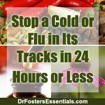 Natural Home Remedies to Fight Colds and Flu | Herbs recommended by holistic MD