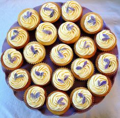 lemon lavender cupcake  french lemon buttercream  candied spanish lavender petals     http://timemart.vn/305/p/316609/may-trong-rau-mam.  http://timemart.vn