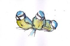"""Three blue tits by Becca Alaway Watercolours """" A series of bird paintings using a loose ink and watercolour wash technique. Each piece is on high quality … """" Watercolor Animals, Watercolor And Ink, Bird Drawings, Animal Drawings, Blue Tit Tattoo, Bluebird Tattoo, Butterfly Clip Art, Bird Illustration, Little Birds"""