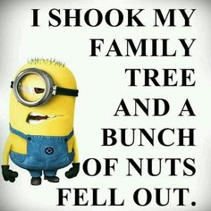 We have been collecting some of the most funniest and best minions quotes and funny pics, same is here . Some of the most hilarious minions pictures with captions ALSO READ: Banana Minions ALSO READ: 30 Best Funny Animal Memes of all times Funny Minion Memes, Minions Quotes, Funny Jokes, Hilarious, Minion Humor, Minion Sayings, Funniest Jokes, Funny Sarcasm, Minion Pictures