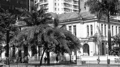 Paulista Avenue  Mobgraphia Xperia z2    #cidadenacidade #loosemag #shootermag_brasil #minhacidade #euvejosp #sonyxperia #mobgraphiabrasil #mobgraphia #brstreet #streetphoto_brasil  #spdagaroa #ig_saopaulo #saopaulowalk #sp4you #olharesdesampa #splovers #clicksampa #saopaulo_originals #saopaulocity #culturasp #streetphoto #streetart #coolsampa #sampaclick #saopaulonline #saopaulocitylove #saopauloantiga  #aquelasp#sousampa #ckturistando by edmilson.silva.779