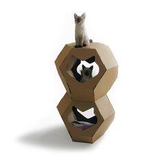 Kittypod geodome