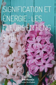 My website troubleshot feng shui home Fung Shui Home, Plantes Feng Shui, Fen Shui, Decoration Plante, I Ching, Hygge, Flowers, Design, Ayurveda