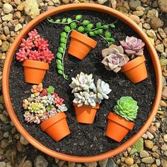 55 creative DIY succulents ideas for you Page 44 of 55 Succulents plants DIY potted plants succulents idea. The post 55 creative DIY succulents ideas for you Page 44 of 55 appeared first on Garden Diy. Succulent Gardening, Succulent Terrarium, Garden Plants, Container Gardening, House Plants, Potted Plants, Succulent Cuttings, Succulent Ideas, Terrarium Wedding