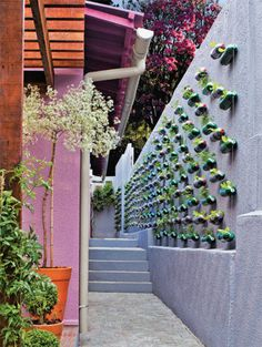 Use garrafas pets para criar um jardim vertical.