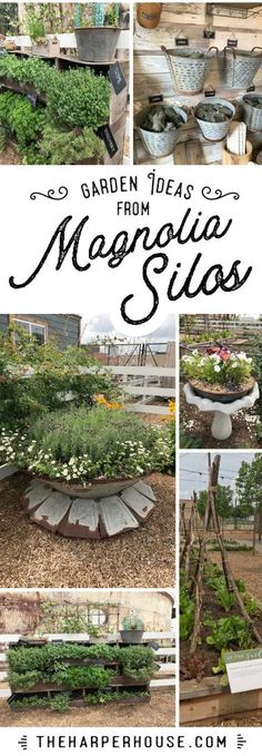 Sharing cute outdoor gardening ideas I found at Magnolia Market. Raised beds, vegetable gardening ideas, outdoor flower garden, herb gardening, Fixer Upper