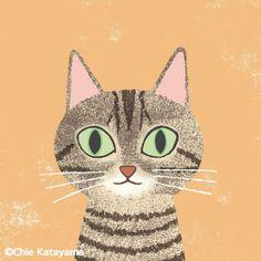 Chie Katayama illustration.キジトラ #illustration #draw #art #cat #猫 #イラスト #イラストレーション