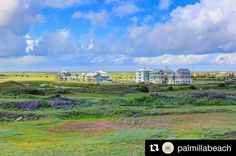 I could stare at this view for hours.  #portaransas #portaransastex http://ift.tt/1M0jTQ3  Repost @palmillabeach  Discover the beauty of the coast right outside your own back door.