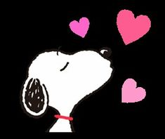 Snoopy in Disguise Peanuts Cartoon, Peanuts Snoopy, Calin Gif, Birthday Wishes, Happy Birthday, Snoopy Pictures, Peanuts Characters, Snoopy Quotes, Charlie Brown And Snoopy