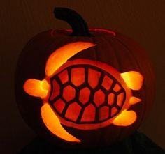 Sea Turtle Pumpkin Carving by http://TropicalSnorkeling.com, via Flickr