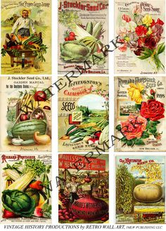 Digital Download, COLLAGE Scrapbook Ephemera Embellishment Set 81, Vintage Seed Packet, Flower and Vegetable Garden , NEW Paper Decoupage by retrowallart on Etsy https://www.etsy.com/listing/159990374/digital-download-collage-scrapbook