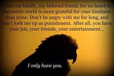 Treat me kindly.