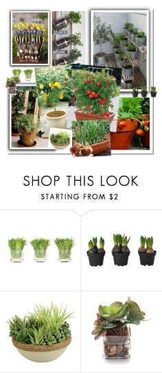 """""""Gardening"""" by dezaval ❤ liked on Polyvore featuring interior, interiors, interior design, home, home decor, interior decorating, NDI, Picnic at Ascot and John-Richard"""