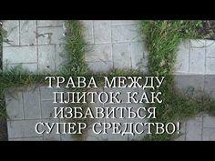 ТРАВА НА ДОРОЖКАХ МЕЖДУ ПЛИТОК - СУПЕР СРЕДСТВО! - YouTube