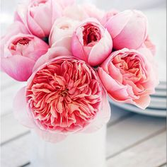 My oh my. Pretty pink bouquets right this way. – Gizem Kate Öztinen My oh my. Pretty pink bouquets right this way. My oh my. Pretty pink bouquets right this way. Fresh Flowers, Spring Flowers, Pretty In Pink, Beautiful Flowers, Perfect Pink, Wild Flowers, Flowers Vase, Flowers Decoration, Beautiful Beautiful