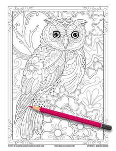 Owl Coloring Pages, Coloring Pages For Grown Ups, Printable Adult Coloring Pages, Mandala Coloring Pages, Christmas Coloring Pages, Coloring Books, Colouring Pages For Adults, Owl Printable, Mandala Printable