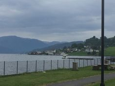 A second view of the fjord at Oystese (14/7/14).