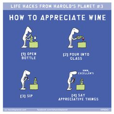 LIFE HACKS FROM HAROLD'S PLANET #3: HOW TO APPRECIATE WINE