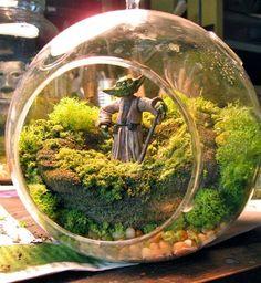 Yoda garden