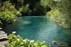 Turquoise blue color in Plitvice lakes